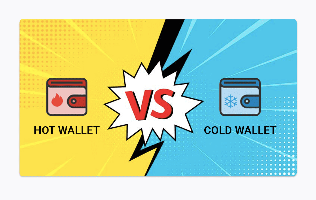 hot wallet and cold wallet