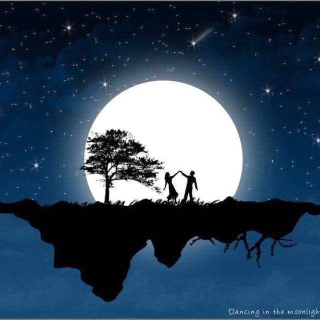 Moonlight Signal