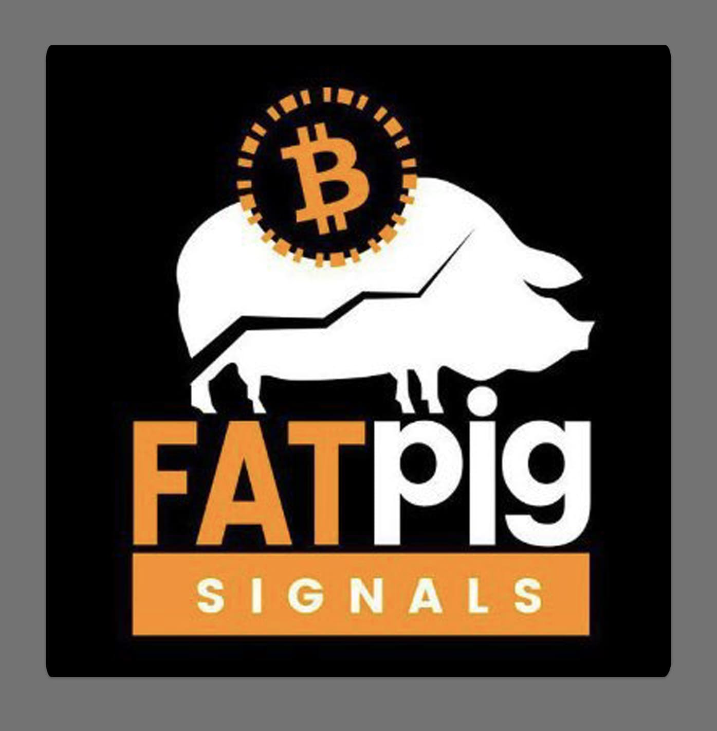 fat pig signals review